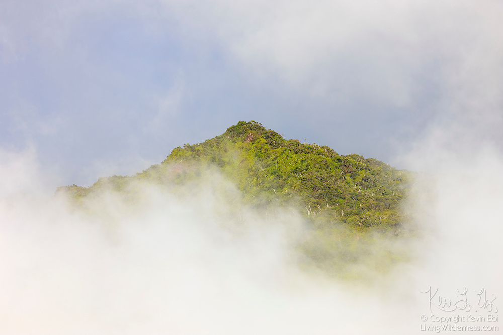 Thick fog in Kauai's Kalalau Valley blocks the view of all but the summit of Keanapuka.