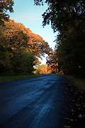 Road wet from dew with morning sun illuminating Oak, Maple and other colorful fall trees.