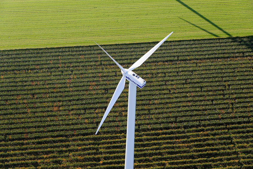 Nederland, Provincie, Plaats, 28-10-2014; windturbine tegen achtergrond van weiland en jonge aanplant <br /> Wind turbine with in the background a meadow and young plantations.<br /> luchtfoto (toeslag op standard tarieven);<br /> aerial photo (additional fee required);<br /> copyright foto/photo Siebe Swart