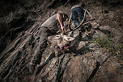 """José Pinguelo climbing the escarpment with the head of a deer.<br /> <br /> """"The Pose and the Prey""""<br /> <br /> Hunting in my imagination was always more like taxidermy — as if the prey was just a mere accessory of the hunter's pose for his heroic photograph — the real trophy.<br /> <br /> When I decided to document the daily lives of Portuguese hunters, I had in my memory the """"cliché"""" from the photographer José Augusto da Cunha Moraes, captured during a hippopotamus hunt in the River Zaire, Angola, and published in 1882 in the album Africa Occidental. The white hunter posed at the center of the photograph, with his rifle, surrounded by the local tribe.<br /> <br /> It was with this cliché in mind that I went to Alentejo, south of Portugal, in search of the contemporary hunters. For several months I saw deer, wild boar, foxes. I photographed popular hunting and private hunting estates, wealthy and middle class hunters, meat hunters and trophy hunters. I photographed those who live from hunting and those who see it as a hobby for a few weekends during the year. I followed the different times and moments of a hunt, in between the prey and the pose, wine and blood, the crack of gunfire and the murmur of the fields .<br /> <br /> I was lucky, I heard lots of hunting stories. I found an essentially old male population, where young people are a minority. Hunters, a threatened species by aging and loss of economic power caused by the crisis in the South of Europe.<br /> <br /> The result of this project is this series of contemporary images, distant from the """"cliche"""" of 1882.<br /> <br /> — Antonio Pedrosa"""