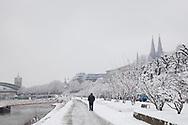 the promenade on the river Rhine in the district Altstadt-Nord, view to the Hohenzollern bridge and the cathedral, snow, winter, Cologne, Germany.<br /> <br /> am Rheinufer im Stadtteil Altstadt-Nord, Blick zur Hohenzollernbruecke und zum Dom, Schnee, Winter, Koeln, Deutschland.