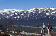 Cross Country Walkers looking at view of snowy landscape with lake and pine trees, hiking, blue sky, remote, backpack