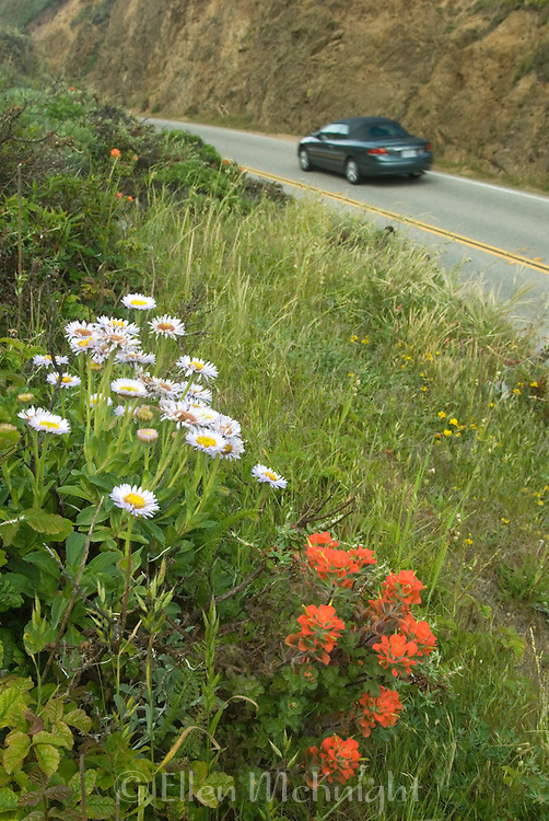 Route One in Big Sur, California