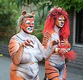 ZSL London Zoo Tiger Streak 12th August 2016