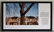 Trunk of an Ash tree in front of Edwardian era semi-detached houses on Ruskin Park, London.<br /> <br /> A limited edition (6 of 6) Lambda digital framed print created for the Werk Nu (Work Now) exhibition at the Z33 Gallery in Hasselt, Belgium and including specially selected text by Alain de Botton from his 'The Pleasures and Sorrows of Work' book (Hamish Hamilton, 2009). <br /> <br /> The photograph is the copyright Richard Baker. The text is the copyright Alain de Botton.<br /> <br /> For print sales enquiries email: richard(at)bakerpictures.com