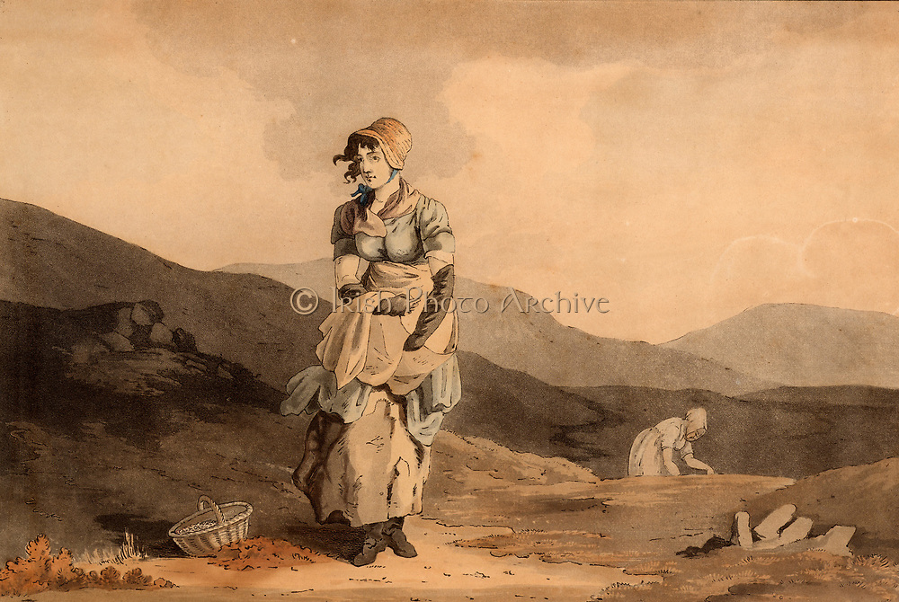 The Cranberry Girl.  The fruit of the Cranberry (Vaccinium oxycoccos), a prostrate shrub native to acid boggy moorlands in Britain, was collected by women and sold in local markets or turned into a preserve for winter use.   From 'The Costume of Yorkshire' by George Walker (Leeds, 1814). Hand coloured aquatint.