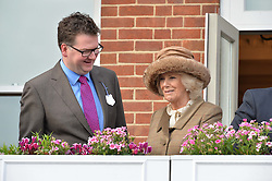 NEWBURY, ENGLAND 26TH NOVEMBER 2016: Ewan Venters and HRH The Duchess of Cornwall at Hennessy Gold Cup meeting Newbury racecourse Newbury England. 26th November 2016. Photo by Dominic O'Neill