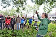 Nederland, Beek,Ubbergen, 17-5-2014Voorvechter van het voedselbos Wouter van Eck geeft belangstellenden een rondleiding over een voedselpark in Beek-Ubbergen. Dag van de Stadslandbouw. Een voedselpark vol bessen, kiwi's, appels, peren en amandelen. Dat idee krijgt langzaam maar zeker vorm in Beek waar buurtbewoners een groene zone omtoveren tot Voedselpark Beek.Foto: Flip Franssen