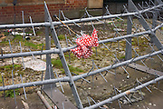 Abandoned red spotted umbrella tangled on spiked security barrier on Hungerford Bridge.