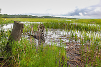 a view of the salt marsh from Village Creek Landing on St. Simons Island. Looking towards Hampton Marina.