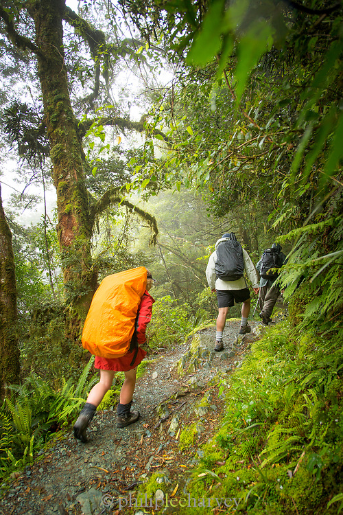 Group of three people hiking along the Routeburn Track, South Island, New Zealand