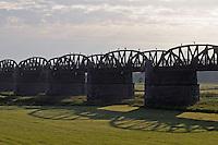 Biosphärenreservat Niedersächsische Elbtalaue; Mission: Black Storks River Elbe Germany; Biosphere Reserve Middle Elbe; Eisenbahnbrücke Doemitz; Railway Bridge Doemitz; Graureiher; Grey Heron; Ardea cinerea