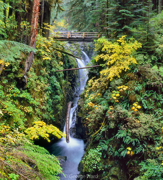 Sol Duc Falls and River in Autumn, Olympic National Park, Washington