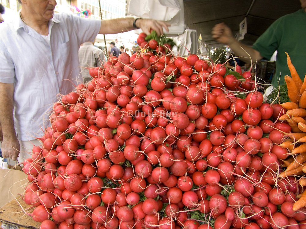 man selecting a bunch of radishes at a green market