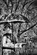 Rain Man checks the weather rain or shine.