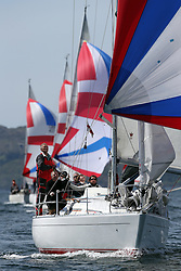 The Clyde Cruising Club's Scottish Series held on Loch Fyne by Tarbert. Day 2 racing in a perfect southerly..Sigma 33, 1685C ,Rajah ,Roy Summers ,CCC/RNCYC