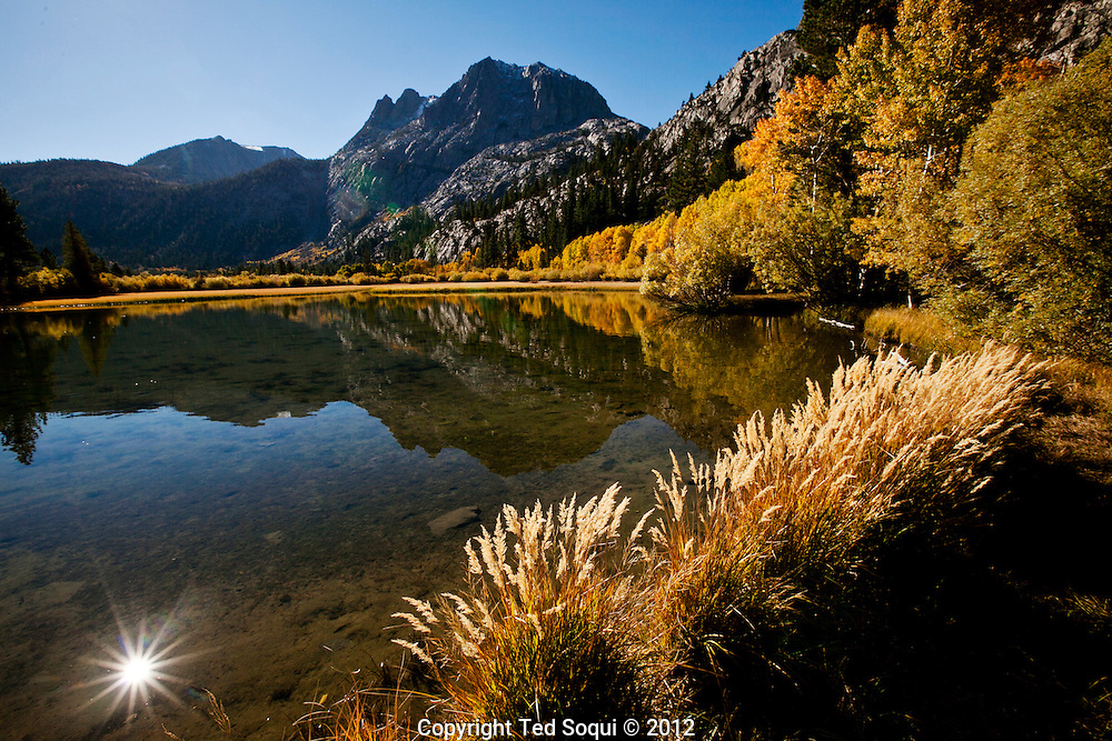 The autumn season in the Eastern High Sierra area of California. .Thousands of trees are changing colors and producing brilliant and vibrant colors leaves all over the Eastern Sierra valley.