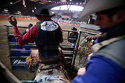 Italy, Voghera, Cowboys ranch: Saddle Bronc Riding  .Cowboys show and contest.