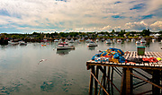 Subject: A quintessential fishing village, Corea, Maine, is home to a fleet of lobster boats, each with its colour-coded buoys and fishing territory. When caught, lobsters are measured immediately and thrown back if they are too small or too large. The 'goldilocks' sized are kept and sold to lobster pounds who also supply the bait. Lobsters can smell and stinky bait is best. <br /> <br /> IMAGE: The photo was shot from such a pound with gear, seagulls and boats pointing into the ocean breeze.A wide-angle shot, originally in sharp focus, rendered for artistic purposes to present a watercolour look and feel.