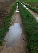 Puddles in farm track crossing fields, Alderton, Suffolk, England, UK