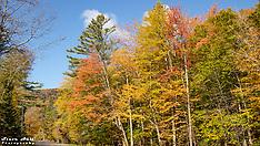 Fall Foliage, Vermont 2019