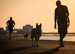© Licensed to London News Pictures. 14/09/2016. Portsmouth, UK.  People walking their dogs along Southsea Promenade in the warm weather this morning, 14th September 2016. Temperatures are set to remain warm over the coming days in the south of England. Photo credit: Rob Arnold/LNP