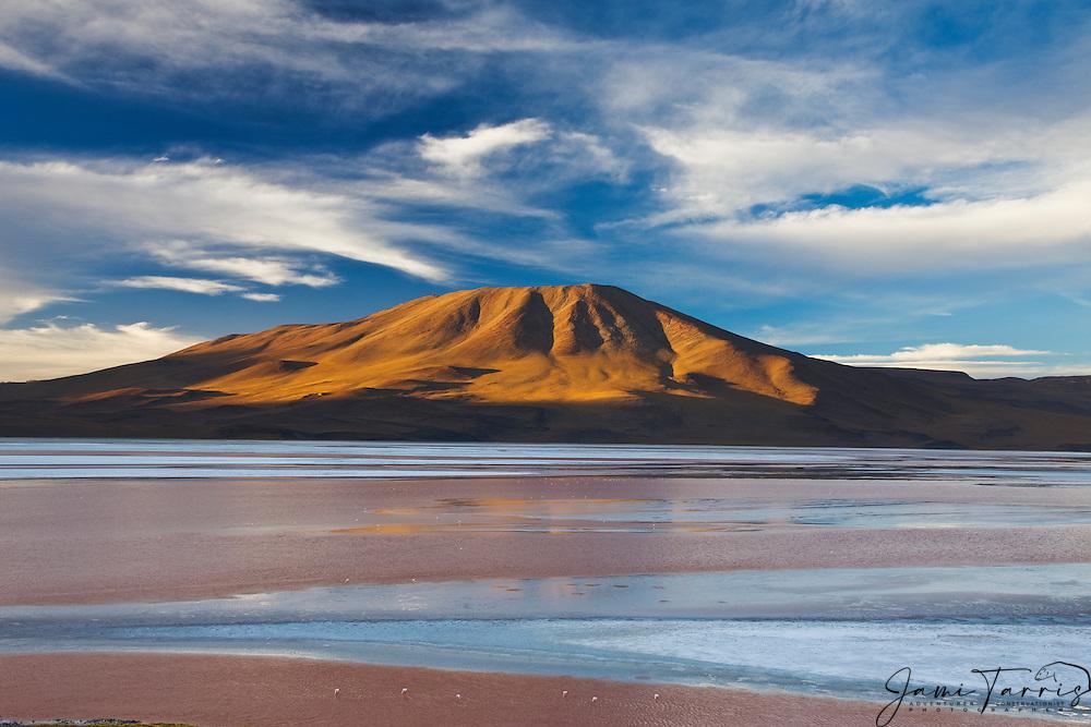 Laguna Colorada is a shallow red lake in the southwest of the Altiplano of Bolivia, Eduardo Avaroa Andean Fauna National Reserve, Bolivia
