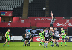 Ospreys' Alun Wyn Jones claims the lineout<br /> <br /> Photographer Simon King/Replay Images<br /> <br /> EPCR Champions Cup Round 4 - Ospreys v Northampton Saints - Sunday 17th December 2017 - Parc y Scarlets - Llanelli<br /> <br /> World Copyright © 2017 Replay Images. All rights reserved. info@replayimages.co.uk - www.replayimages.co.uk