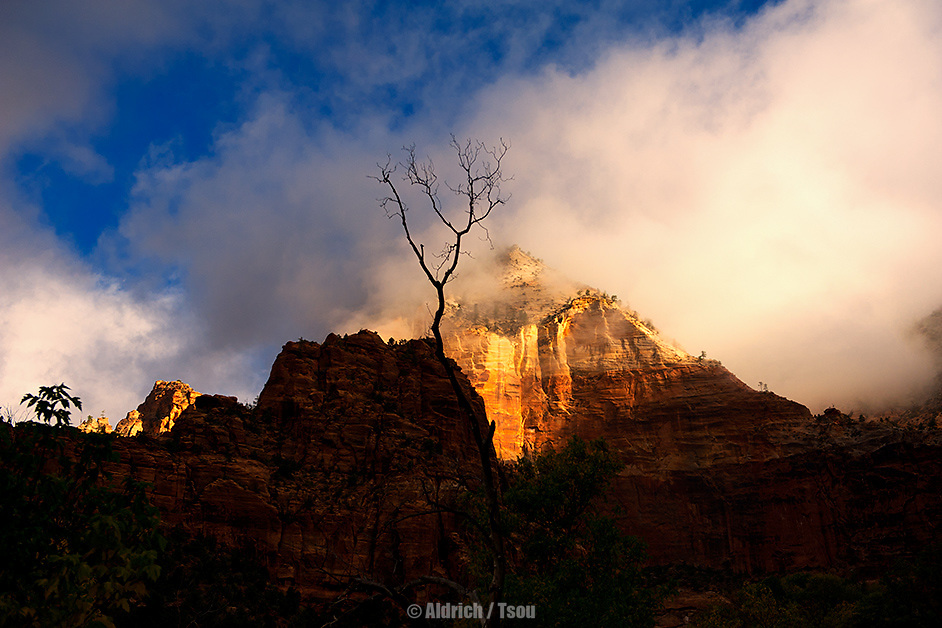 Zion National Park UT