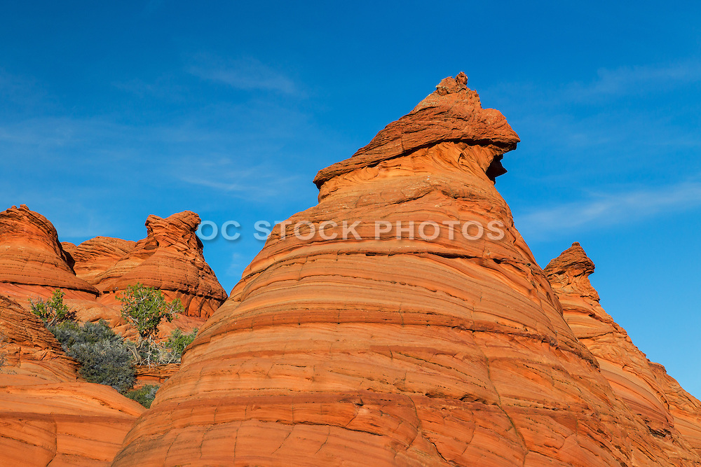 Coyote Buttes South Paw Hole Trail in  Arizona