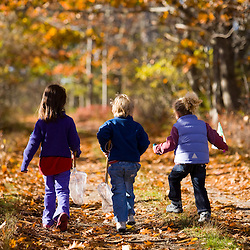 Three young children(ages 4 and 6) on a woodland trail in Biddeford, Maine.  Timber Point.