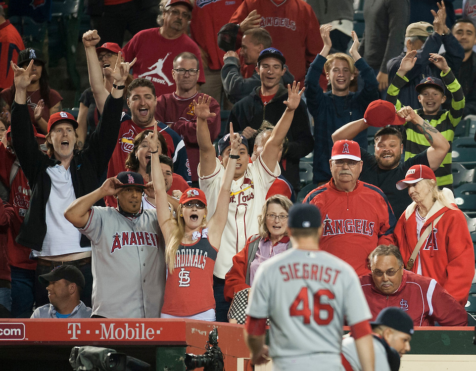 St. Louis Cardinals fan celebrate after catcher Yadier Molina came up with Shane Robinson's pop fly to end the game during the Angels' 12-10 loss to the St. Louis Cardinals Thursday at Angel Stadium.<br /> <br /> //ADDITIONAL INFO:   <br /> <br /> angels.0405.kjs  ---  Photo by KEVIN SULLIVAN / Orange County Register  -- 5/12/16<br /> <br /> The Los Angeles Angels take on the St. Louis Cardinals Thursday at Angel Stadium.