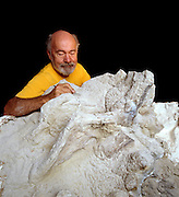 Dave Thomas excavates Seismosaurus bones which are the same color as the stone surrounding them.  Bones from the Morrison Formation are about 200X more radioactive than the stone so a black light is used in preparation.<br /> Dave Thomas excavates Seismosaurus bones which are the same color as the stone surrounding them.  Bones from the Morrison Formation are about 200X more radioactive than the stone so a black light is used in preparation.