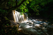 Dappled sunlight touches down through the forest canopy over Claypool Falls on Meadow Creek in West Virginia.