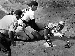San Francisco Giants catcher Bob Brenly tags out Cincinnati Reds Marvell Wynne trying to score in the 10th inning. (photo by Ron Riesterer)