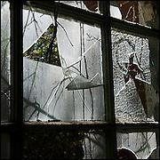 Broken windows in sunlight in an abandoned mental asylum.