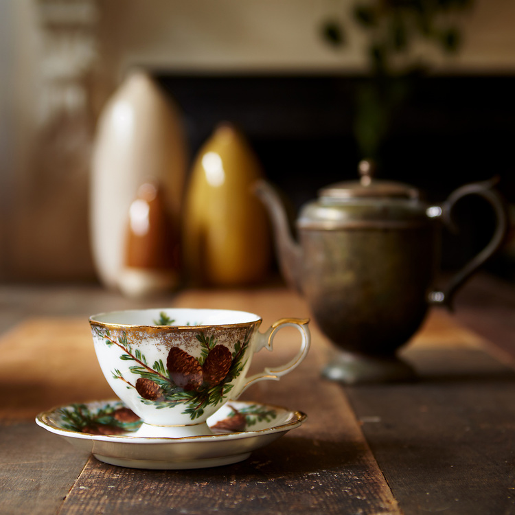 Foster Family Teacup #2