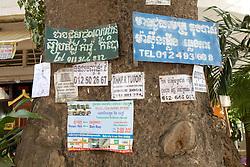Advertisements On Trees
