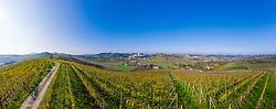 THEMENBILD - Weinberge rund um Castellinaldo d'Alba, Panoramaansicht. Castellinaldo ist ein Dorf im Herzen des Roero-Bezirks. Das Dorf umgibt die Burg aus dem 16. Jahrhundert, die die Häuser darunter überragt. Die Pfarrkirche San Dalmazzo, die Kirche des Heiligen Leichentuchs und die Casa Cottalord, auch bekannt als Casa Rossa (das Rote Haus). In der Gegend gibt es eine Vielzahl hochwertiger Produkte: Pilze, Trüffel, Honig und zahlreiche Sorten Pfirsiche, Birnen, Erdbeeren, Kastanien und Spargel. Castellinaldo, Italien am Mittwoch, 9. November 2019 // Panoramic view of the Vineyards arround Castellinaldo d'Alba. Castellinaldo is a village in the heart of the Roero district. The village surrounds the 16th-century castle, which overlooks the houses below. The parish church of San Dalmazzo, the Church of the Holy Shroud and Casa Cottalord, also known as Casa Rossa (the Red House). In the area there are a variety of high quality products: mushrooms, truffles, honey and numerous varieties of peaches, pears, strawberries, chestnuts and asparagus. Saturday, November 9, 2019 in Castellinaldo, Italy. EXPA Pictures © 2019, PhotoCredit: EXPA/ Johann Groder<br /> <br /> ***** ACHTUNG - dieses Bilddatei ist für den Grossformatdruck in einer maximalen Grösse mit mehr als 15000 x 5500 pixel (ca. 400 MB) verfügbar! Fragen Sie nach den hochauflösenden Daten // ATTENTION - This image file is for Large Format Printing available in a maximum size of more then 15000 x 5500 pixels (about 400 MB)! Ask for the high-resolution data. *****