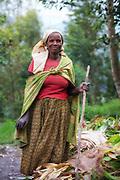 We met this lady and four of her family members during a short stop from Kigali to Volcano National Park in Rwanda. They worked with harvesting animal food and herding their animals | Vi møtte denne dama og fire familiemedlemmer under en kort stopp fra Kigali til Volcano National Park i Rwanda. Dei arbeiide med å samle mat til dyrene, samt gjete dyra sine.