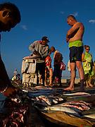 A tourist from Bogota scopes the daily catch at a beach pier in Santa Marta. - Santa Marta - Colombia