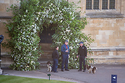 © Licensed to London News Pictures. 19/05/2018. London, UK. Place with sniffer dogs wait at a side entrance to the Chapel. The wedding of Prince Harry to Meghan Markle at St George's Chapel in Windsor. Photo credit: Ben Cawthra/LNP