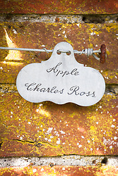 Apple label against a brick wall at West Dean Gardens, West Sussex