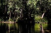 Sungai Petuang, Kenyir, Malaysia, River Expedition