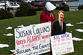 Anti-Collins Protests