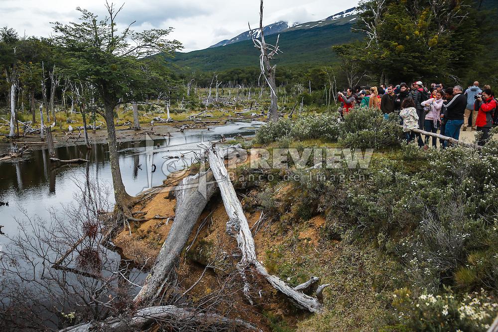 Turistas observam as Castoreras, ou diques feitos pelos castores, no Parque Nacional Tierra del Fuego - Ushuaia,  Patagônia. FOTO: Jefferson Bernardes/ Agência Preview