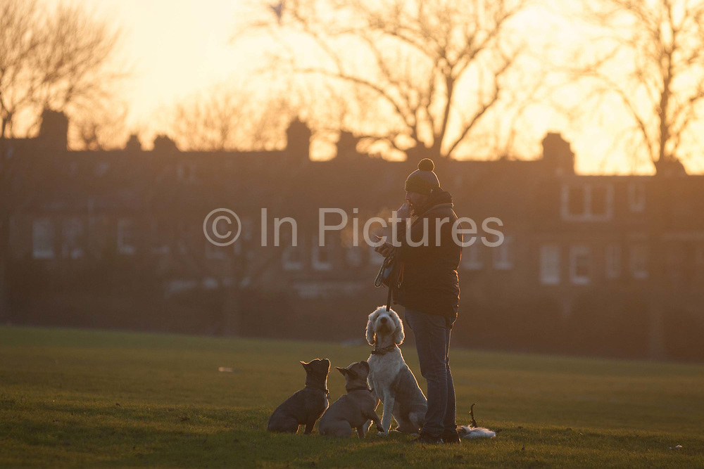 With the rears of homes in the background, a pet owner trains his dogs with treats in a landscape of an urban setting sun, on 5th January 2017, in Ruskin Park, London borough of Lambeth, England.