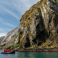 Guests on a zodiac cruise at Elsehul, a bay on the northwest coast of South Georgia Island.