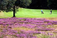 Arnhem - Rosendaelsche Golfclub hole 11.