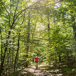 A man rides his mountain bike in a forest in Jackson, New Hampshire.
